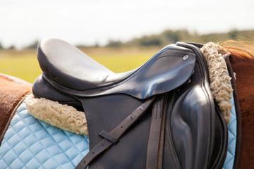 Keuken foto achterwand Paardrijden Saddle on a horse