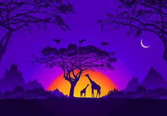 Photo sur Aluminium Violet African sunset