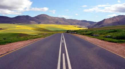 Foto auf Acrylglas Südafrika Endless Road Rural Landscape South Africa