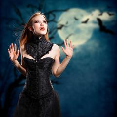 Papiers peints Pleine lune Vampir