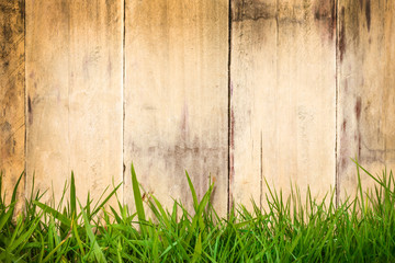 Old wooden planks with green grass in front