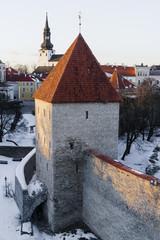 Wall Mural - Neitsi towerin