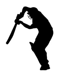 Sport Silhouette - Cricket Batsman Blocking Ball