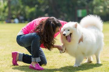 shake dog's hand