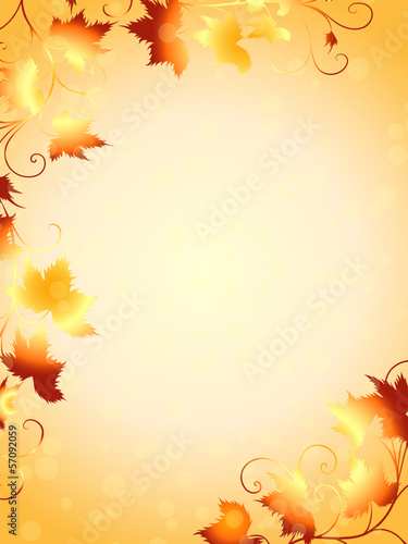 weinblatt weinbl tter blatt botanik herbstblatt herbst rahmen stockfotos und lizenzfreie. Black Bedroom Furniture Sets. Home Design Ideas