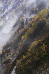 杓子岳の斜面