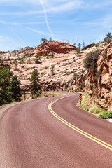 Wall Mural - Road in Zion