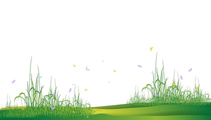 beauty grass silhouette