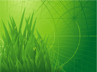 Green eenvironmen. Vector background