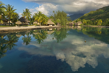 Französisch-Polynesien-Moorea-6460