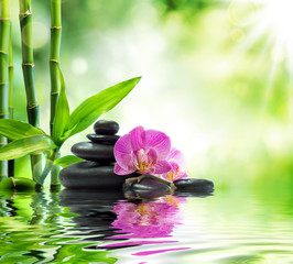 Fotobehang - Background spa - orchids black stones and bamboo on water