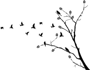 tree silhouette with birds flying