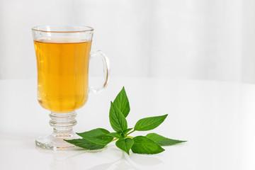 Tea and fresh mint