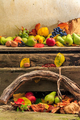 autumn still life with fruit in leaves on board and vines backgr