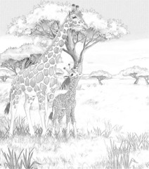 Cartoon giraffe - coloring page - illustration