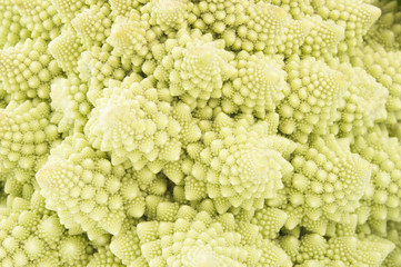 Macro photo of fresh cabbage Romanesco