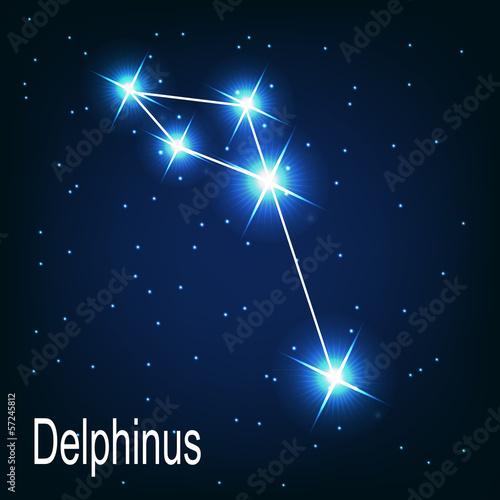 constellations delphinus essay