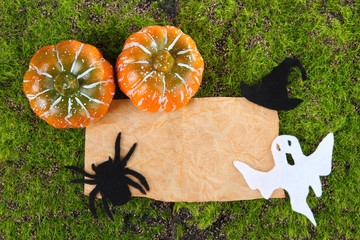 Old paper with Halloween decorations on green moss background
