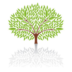 Big green tree Vector Illustration.