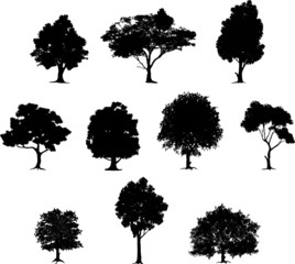 collection of tree silhouette