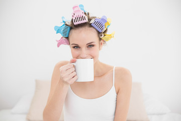 Delighted natural brown haired woman in hair curlers enjoying co