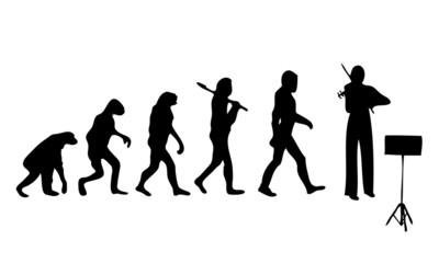 Evolution Volin