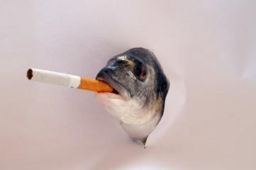 pesce che fuma sigarette