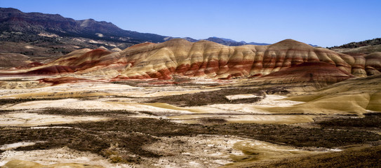 Panoramic Horizontal Composition Painted Desert John Day Fossil