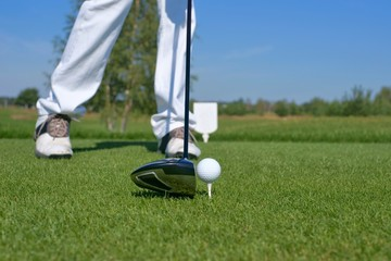 Golf, driver and golf ball on the green
