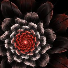 Wall Mural - Red fractal flower