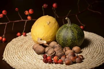 still life made of pumkins,briar,walnuts and hazelnuts