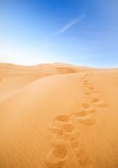 Poster de jardin Desert de sable footsteps in desert