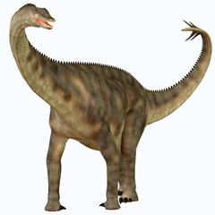 Spinophorosaurus over White