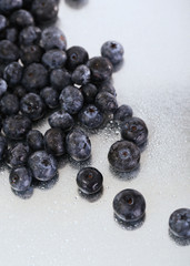 Blueberries on metal background