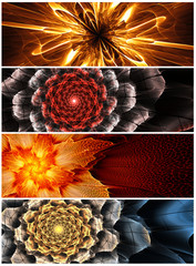 Fototapete - Four abstract flower banners