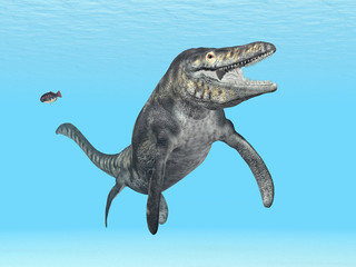 Mosasaur Tylosaurus