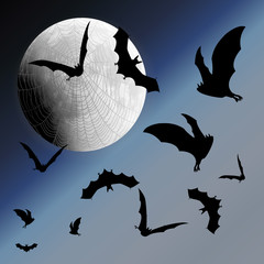 Background with night sky, moon, web and bats