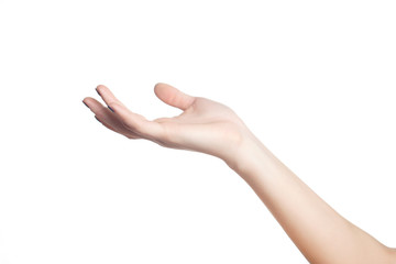 Female hand on a white background