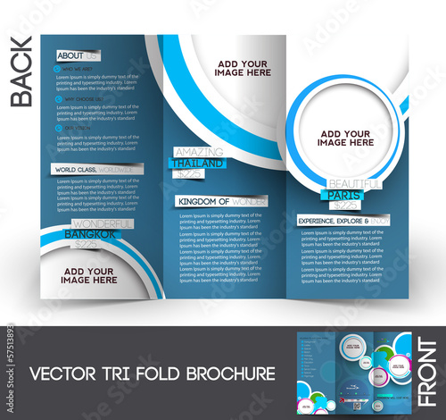 informational brochure design