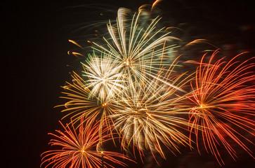 firework in the sky