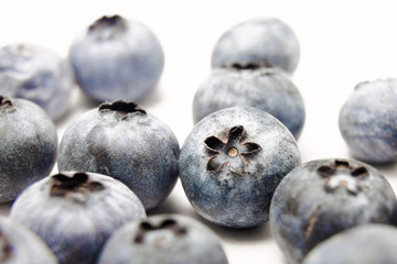 Blueberries (white background)