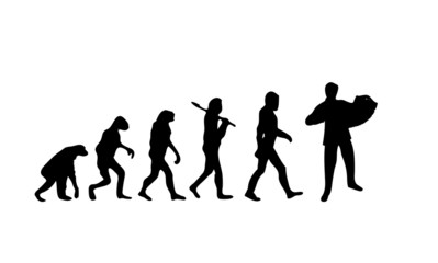 Evolution Accordion
