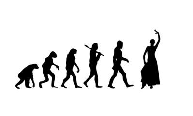 Evolution Flamenco