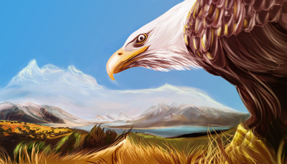 Eagle digital art.
