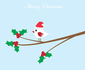 vector bird in Santa hat and holly flower