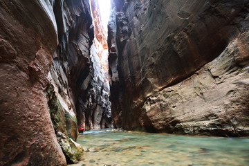 Staande foto Canyon Canyon in Zion