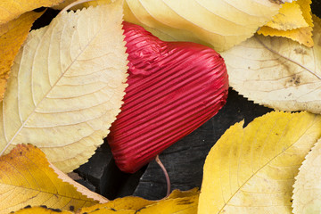 Red wrapped heart and autumn leafs