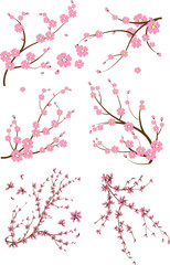 Set of six japanese branch