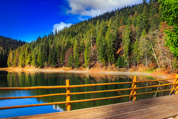 fence on mountain Lake near  forest