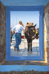 View of a posing donkey threw a window frame  in Santorini islan